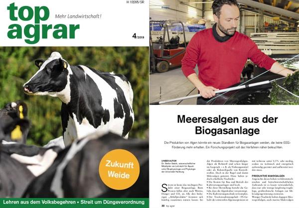 """""""Meeresalgen aus der Biogasanlage"""" - Dr. Stefan Sebök (top agrar 04/2019)"""
